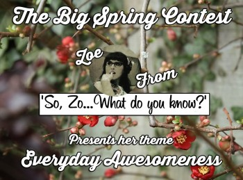 BLOGGER CherryBlossomzoe-WEB