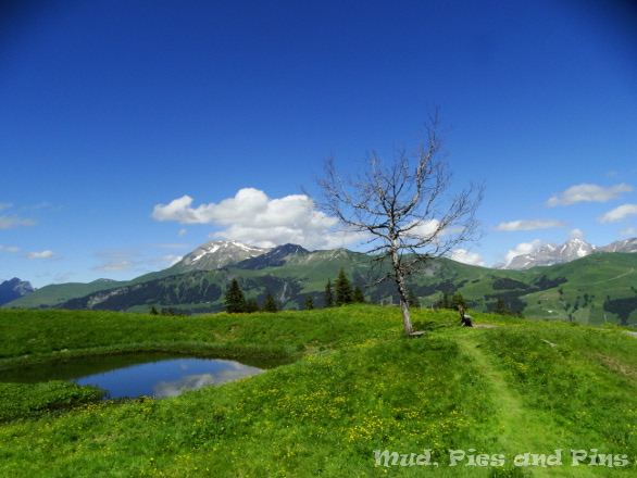 Perfect seat to rest and sew - on Betelberg, Lenk, Switzerland | Mud, Pies and Pins